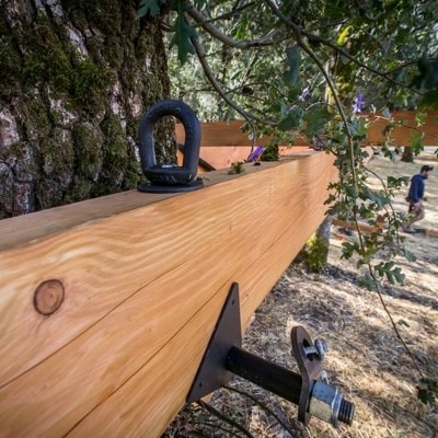 Tree Attachment Bolt by Dustin Feider