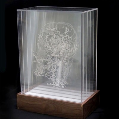 Inside the Box (how to etch and display multiple drawings on transparent acrylic) by Stef Lenk