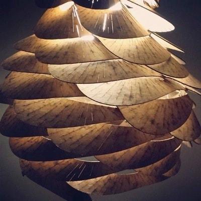 Bloom Parametric Pendant Lamp by Aaron Porterfield