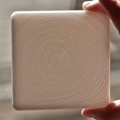 Lasercut Tree Ring Coasters by Vera Shur