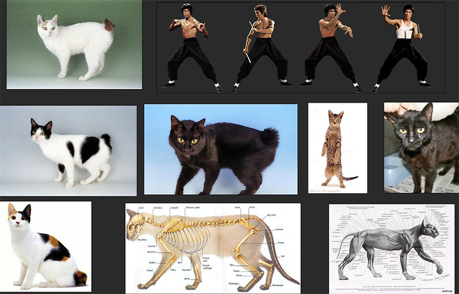 The Making Of Cat Fu Part 2 The Design Brief Articles
