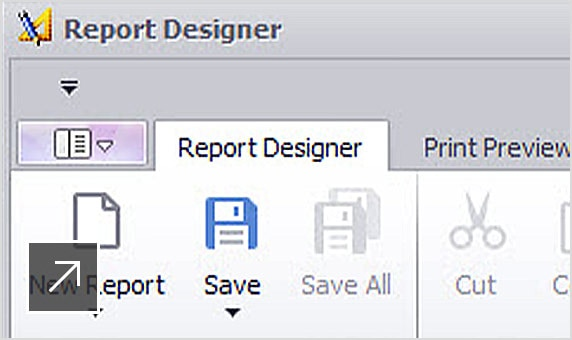 AutoCAD Plant 3D の[レポート デザイナ]パネルのビュー
