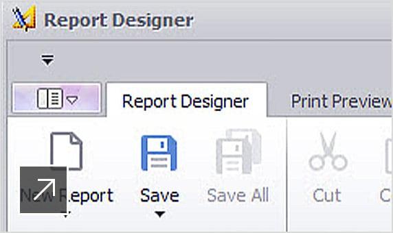 AutoCAD Plant 3D에서 보고서 설계자 패널의 뷰