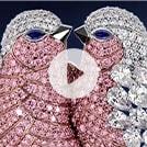 Video: Showreel ohne Ton von DiamondWorks, das das komplexe 3D-Modell von zwei Vögeln aus transparenten und rosafarbenen Diamanten vorstellt