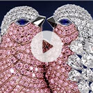 Video: Silent reel from DiamondWorks showing intricate 3D model of two birds made of clear and pink diamonds