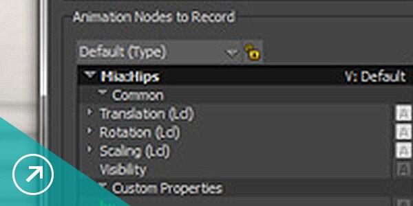 Efficient MotionBuilder editing enviroment