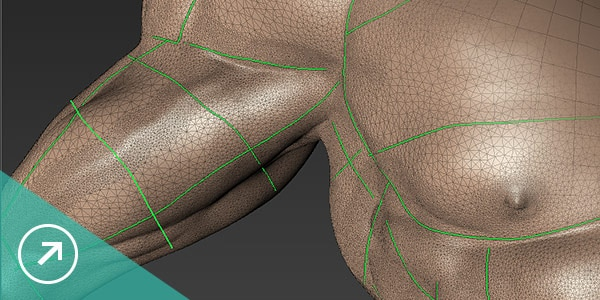 Mudbox retopology tools