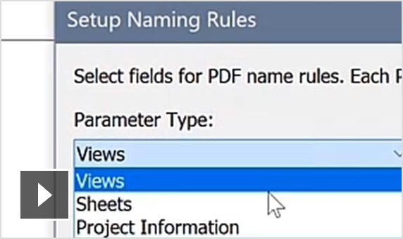 Video: Improve documentation efficiency with options similar to the print dialog and user-defined naming rules