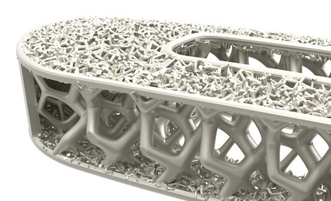 Spinal implant with an oblong shape and intricate lattice work