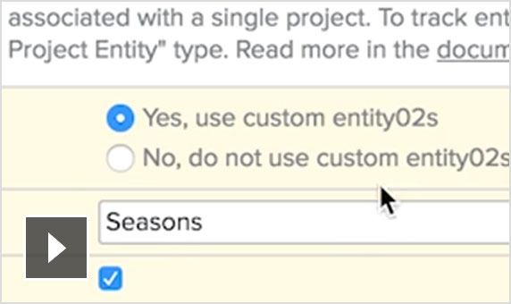 Video: Customise your project entities to suit your studio's needs.