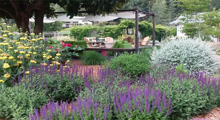 floral garden by Nature's design