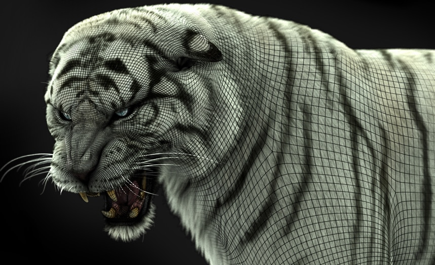 A wireframe over a finely detailed, roaring white tiger in the process of being created in Maya