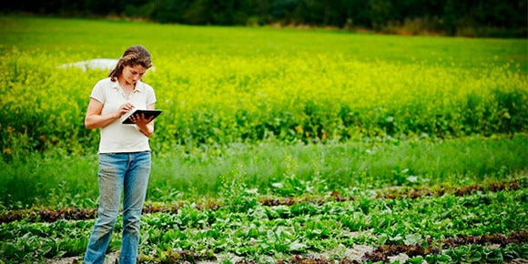 Woman using tablet outside on a farm